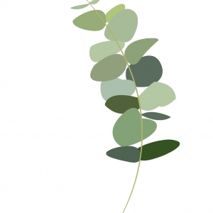 lamina perteneciente a la serie Historia Plantarum