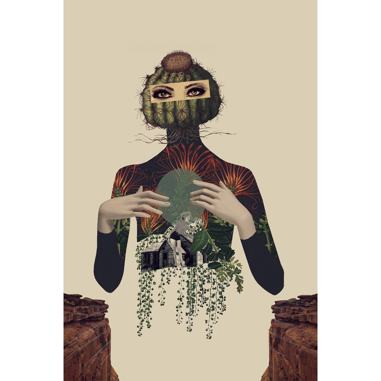 Lamina collage de Papier Colle- cactus casa