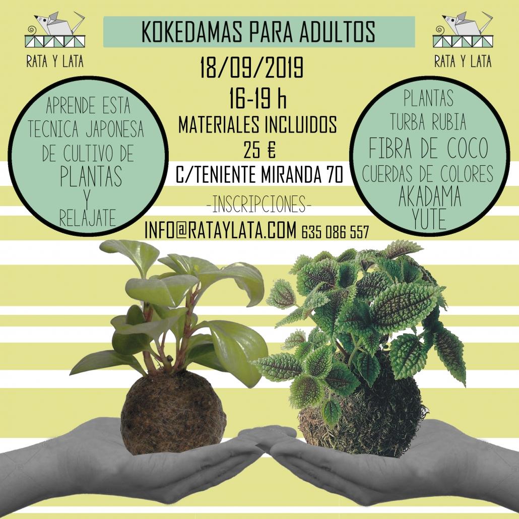 cartel taller para adultos de kokedamas en el centro de algecias